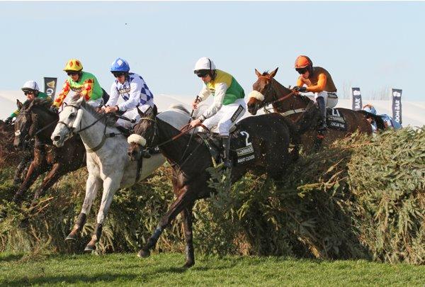 Betfair exchange promo code: bet on horse races online march 2019