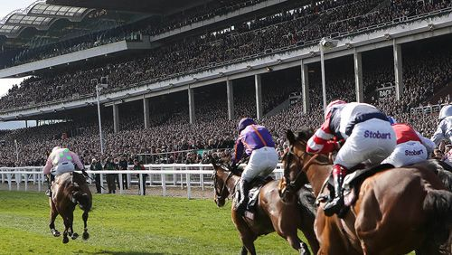 British bookmakers set for cheltenham festival betting surge