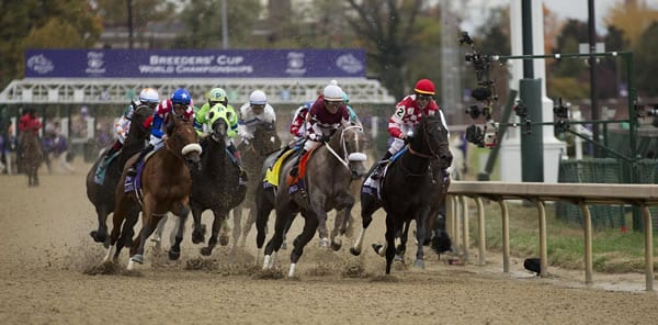 Daily double betting – exotic wagering strategies – multi-race bets variety of additional reasons that