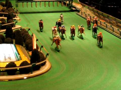 How to bet on horse racing How to bet on the