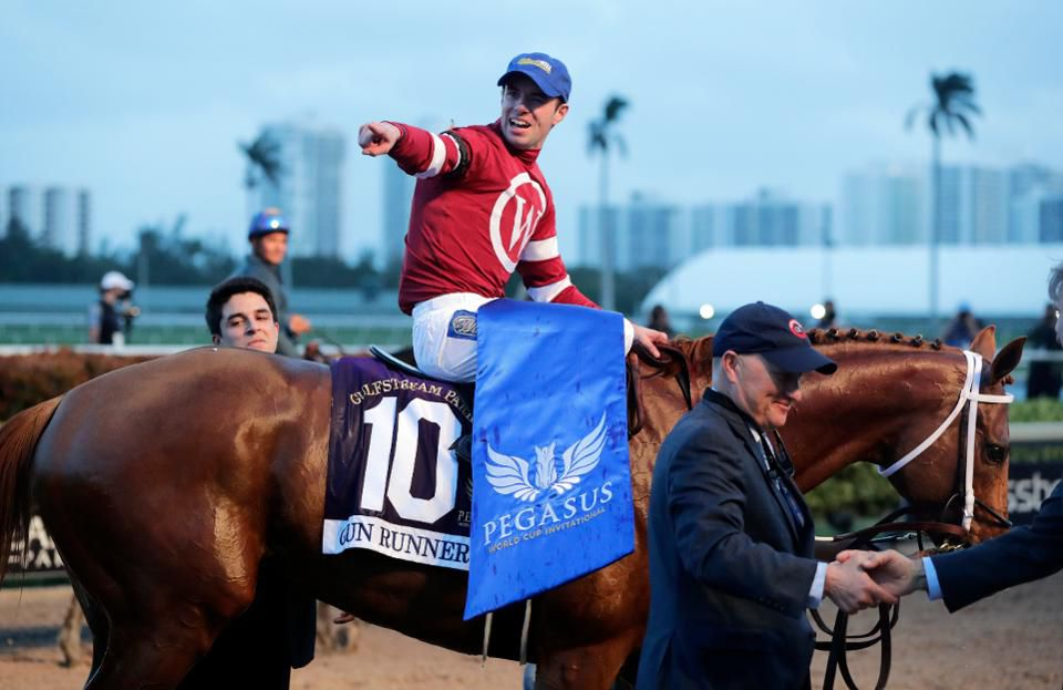 How to bet the pegasus world cup, north america's richest horse race