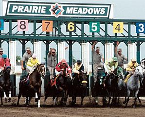 Prairie meadows casino bets big on iowa sports gambling But before
